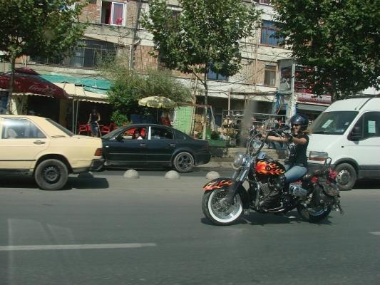 reis-2012 nr62